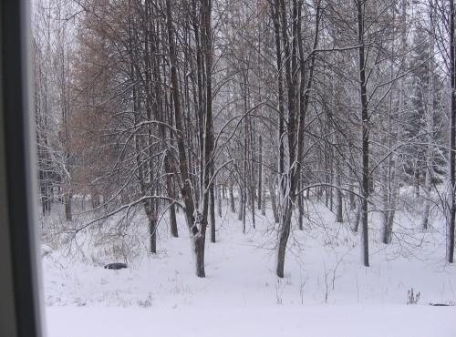 golie-znamenitosti-nochyu-kupayushiesya-v-snegu